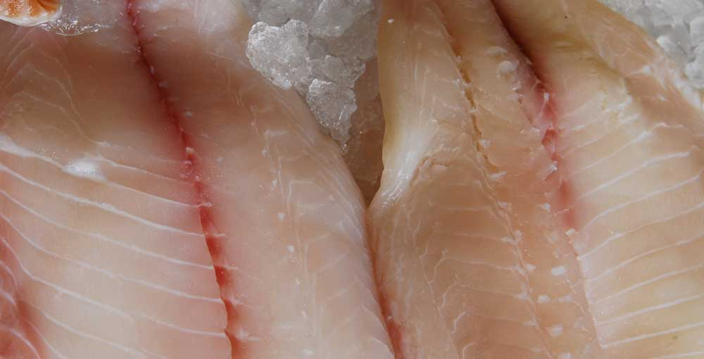 Seafood Photo 2